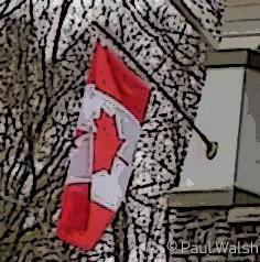 Canadian Flag Art