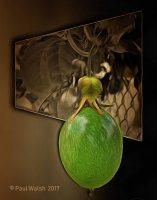 Low Hanging Passion Fruit Mod